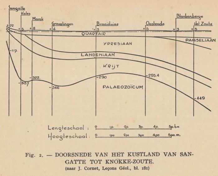 De Langhe (1939, fig. 2)