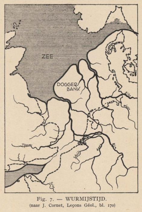 De Langhe (1939, fig. 7)