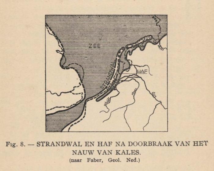 De Langhe (1939, fig. 8)