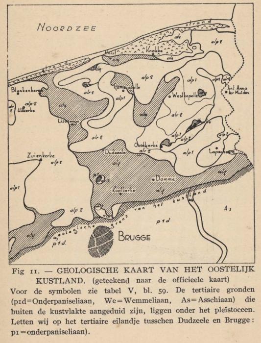 De Langhe (1939, fig. 11)