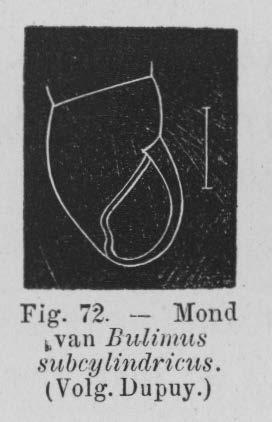 Eben (1884, figuur 72)