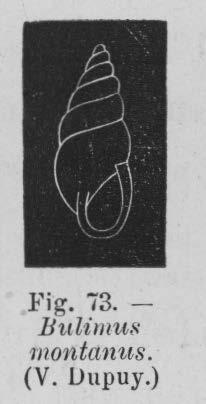 Eben (1884, figuur 73)