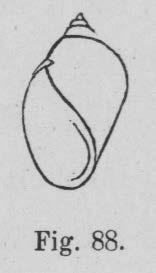 Eben (1884, figuur 88)