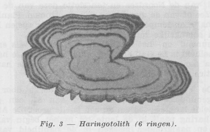 Gilis (1957, figuur 1.3)