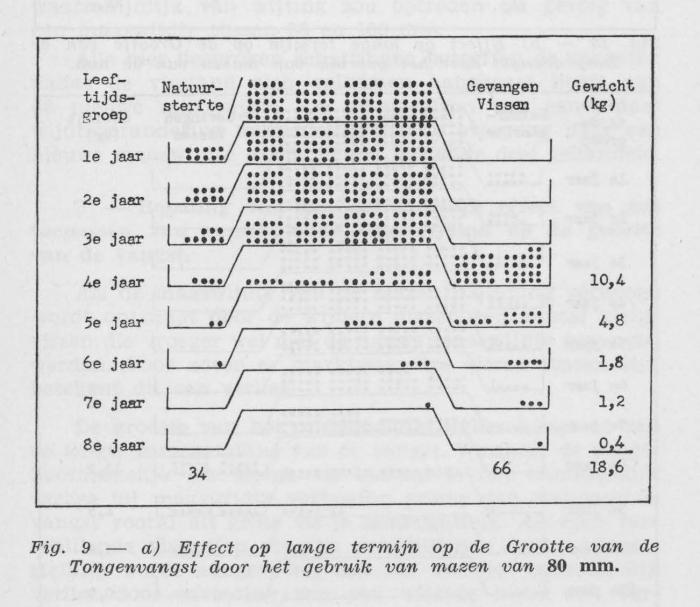Gilis (1957, figuur 2.9)
