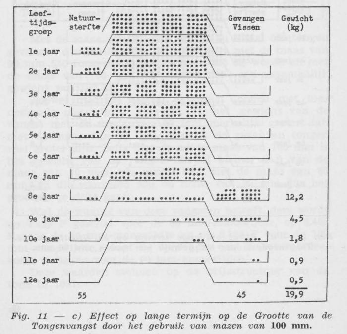 Gilis (1957, figuur 2.11)