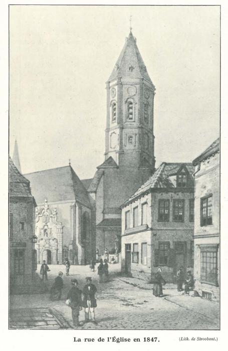 Vandeput (1932, pl. 11)