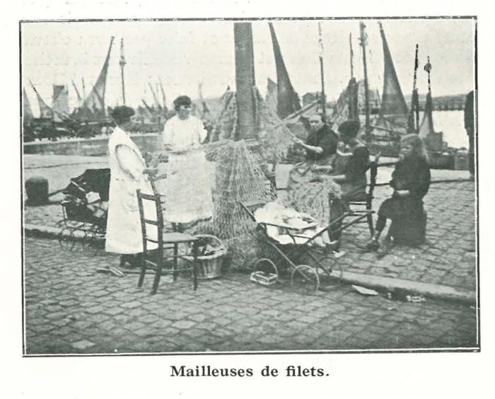 Vandeput (1932, pl. 67)