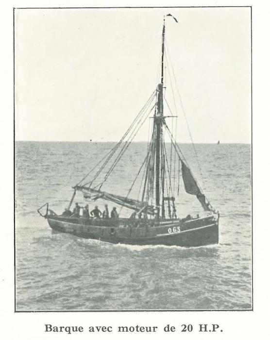 Vandeput (1932, pl. 92)