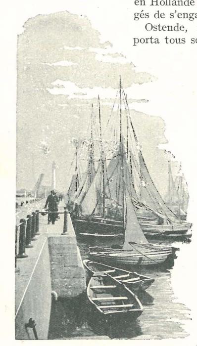Vandeput (1932, pl. 102)
