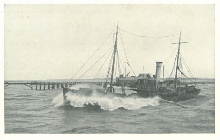 Vandeput (1932, pl. 104)