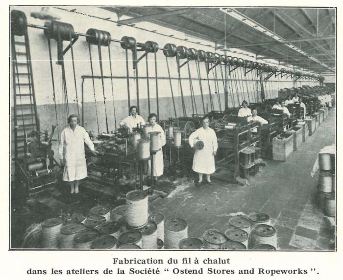 Vandeput (1932, pl. 105)