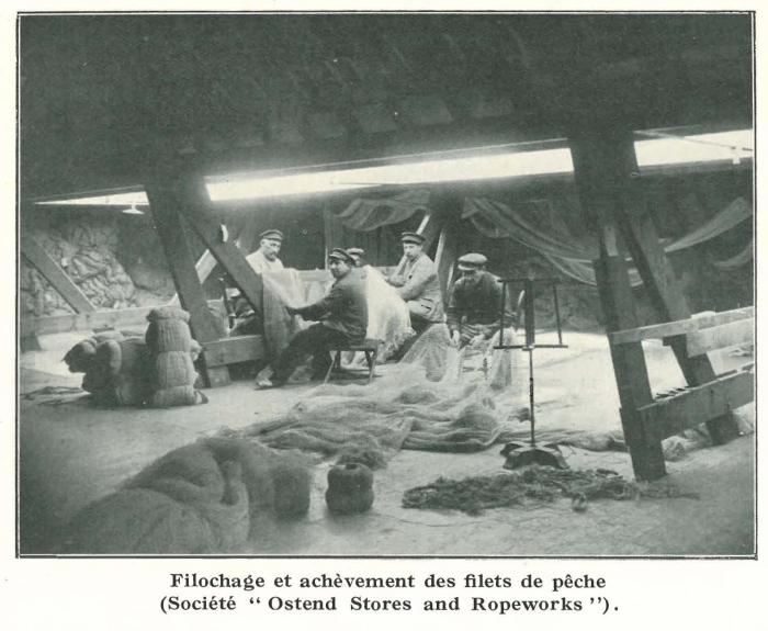 Vandeput (1932, pl. 106)