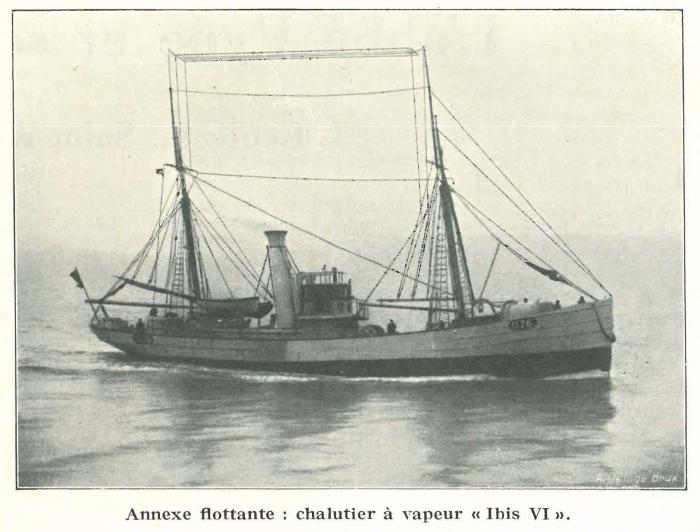 Vandeput (1932, pl. 116)