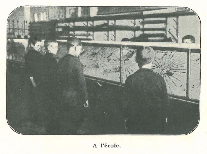 Vandeput (1932, pl. 121)