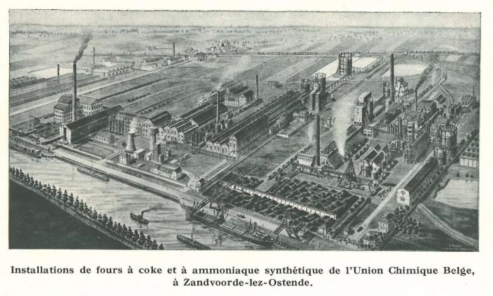 Vandeput (1932, pl. 136)