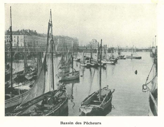 Vandeput (1932, pl. 146)