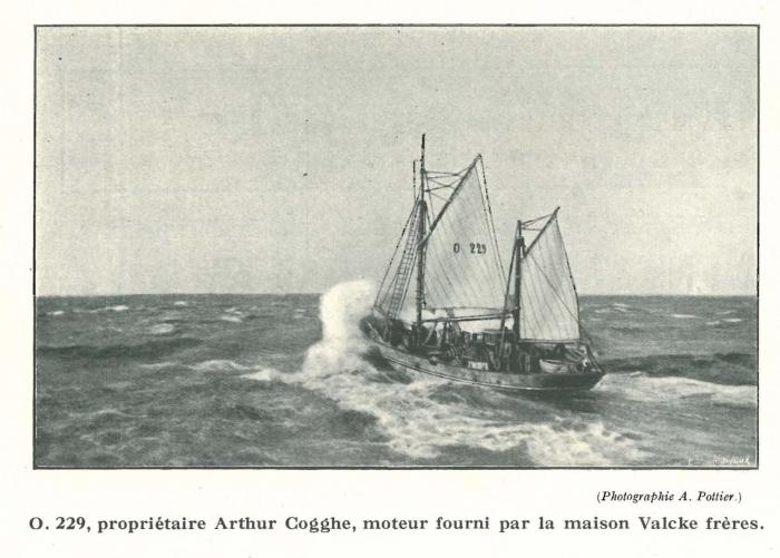 Vandeput (1932, pl. 147)