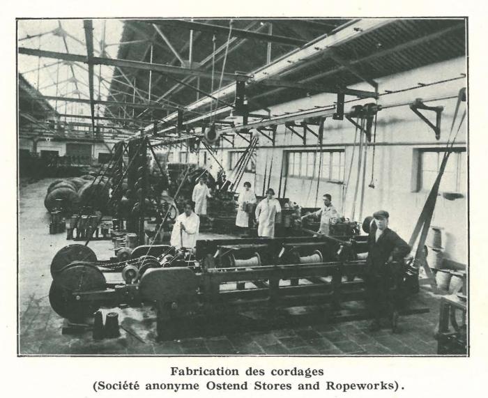 Vandeput (1932, pl. 148)
