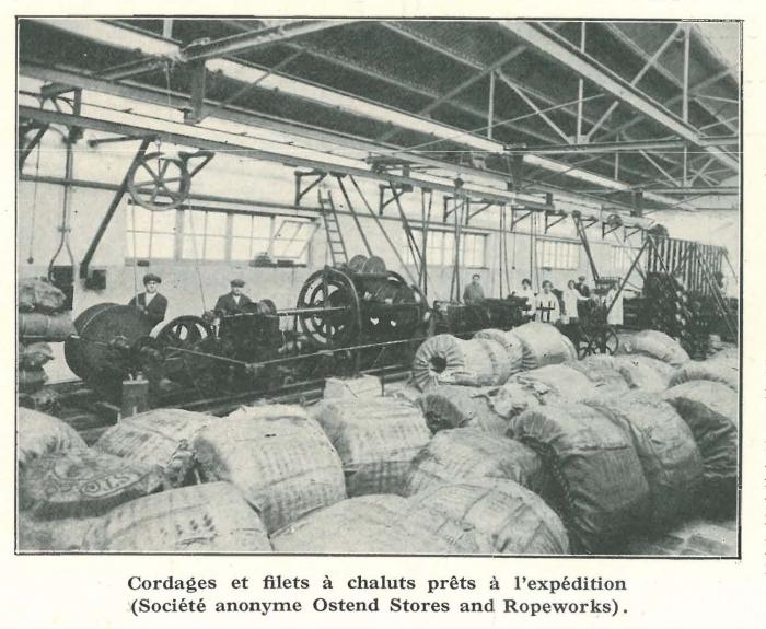 Vandeput (1932, pl. 149)