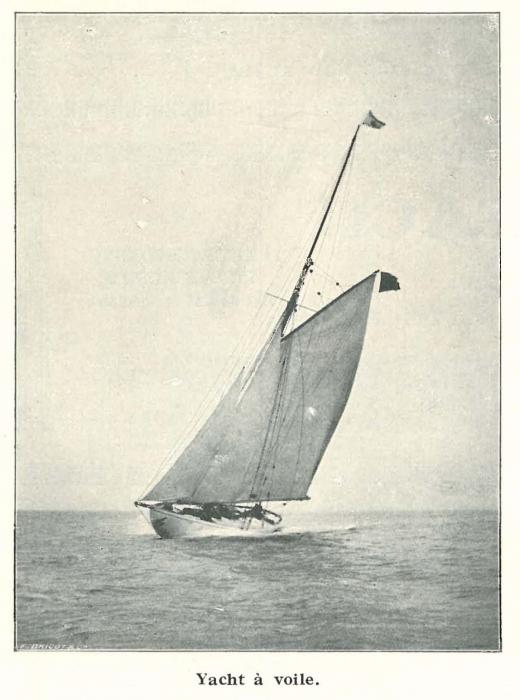 Vandeput (1932, pl. 165)
