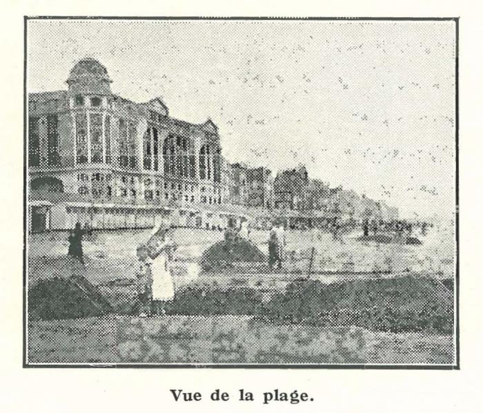 Vandeput (1932, pl. 178)