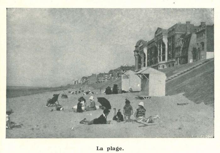 Vandeput (1932, pl. 182)