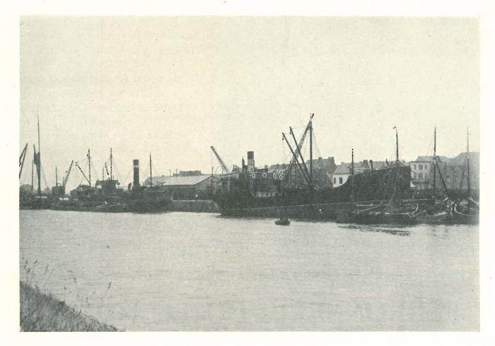 Vandeput (1932, pl. 187)