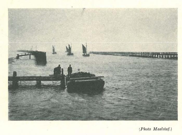 Vandeput (1932, pl. 191)