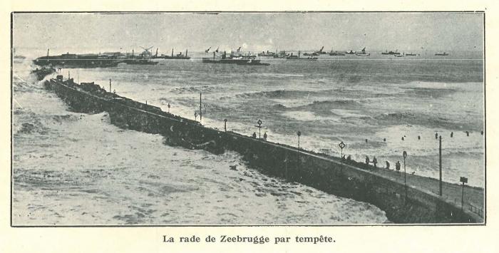 Vandeput (1932, pl. 205)