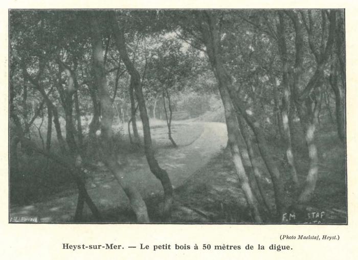 Vandeput (1932, pl. 208)