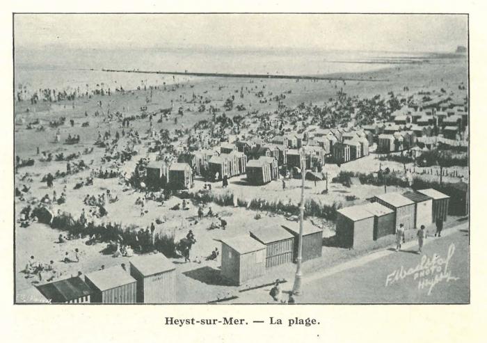 Vandeput (1932, pl. 210)