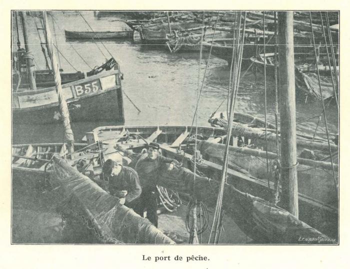 Vandeput (1932, pl. 218)
