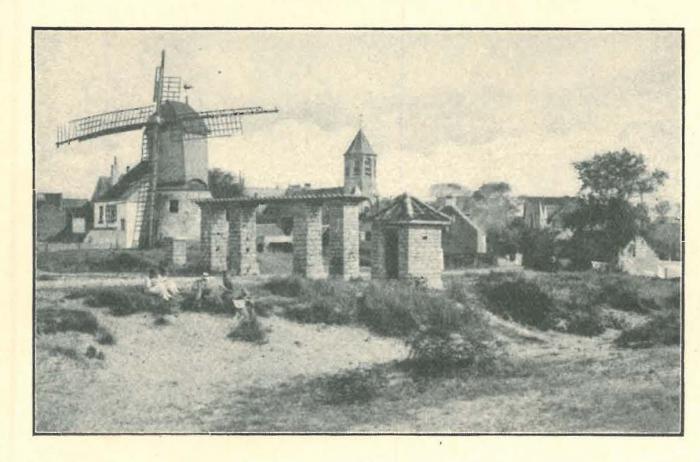 Vandeput (1932, pl. 222)