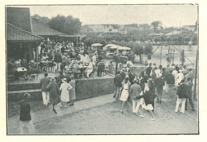 Vandeput (1932, pl. 223)