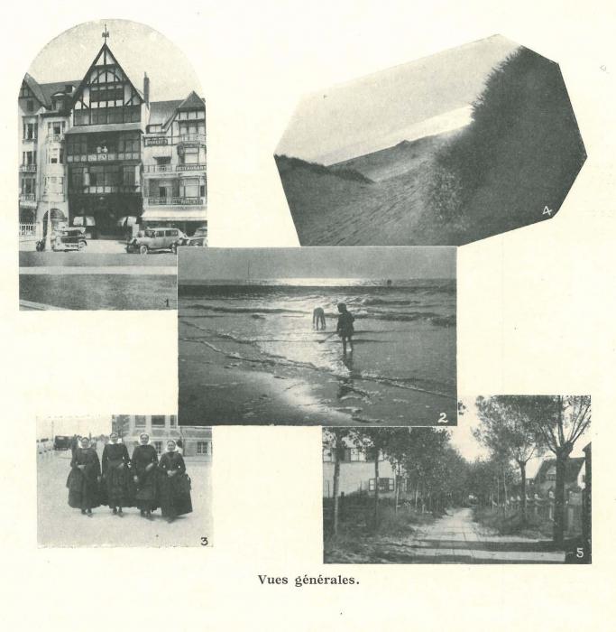 Vandeput (1932, pl. 225)