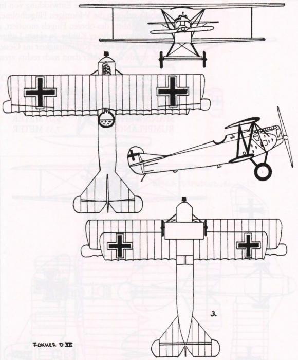 Ryheul (1997, fig. 308)