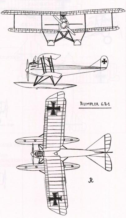 Ryheul (1997, fig. 310)