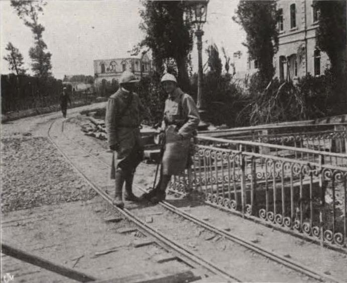Thys (1922, figuur 445)