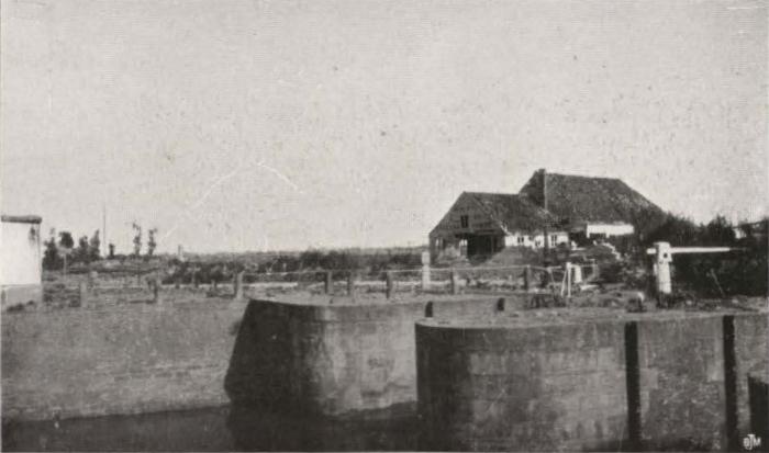 Thys (1922, figuur 451)