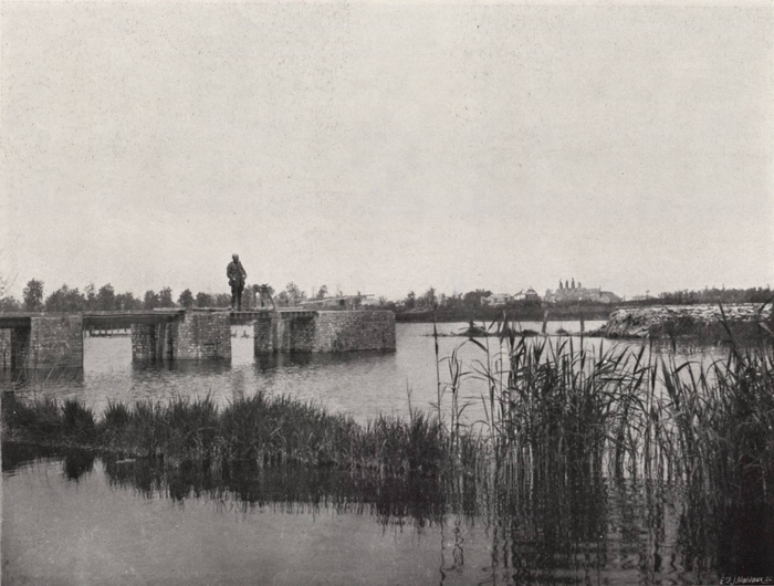 Thys (1922, figuur 462)