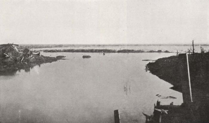 Thys (1922, figuur 497)