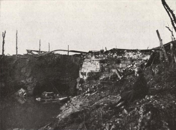 Thys (1922, figuur 503)