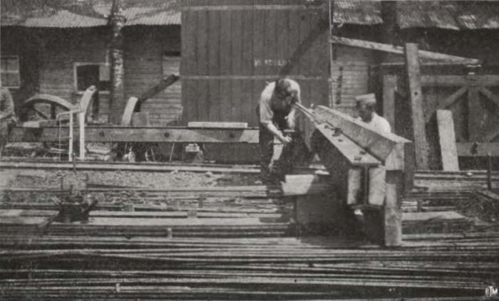 Thys (1922, figuur 519)