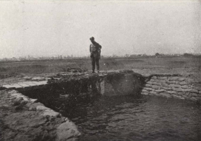 Thys (1922, figuur 526)