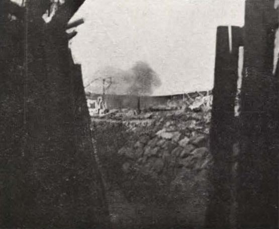 Thys (1922, figuur 541)