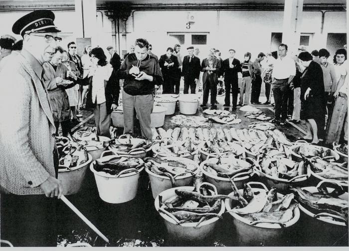 Visverkoop te Nieuwpoort