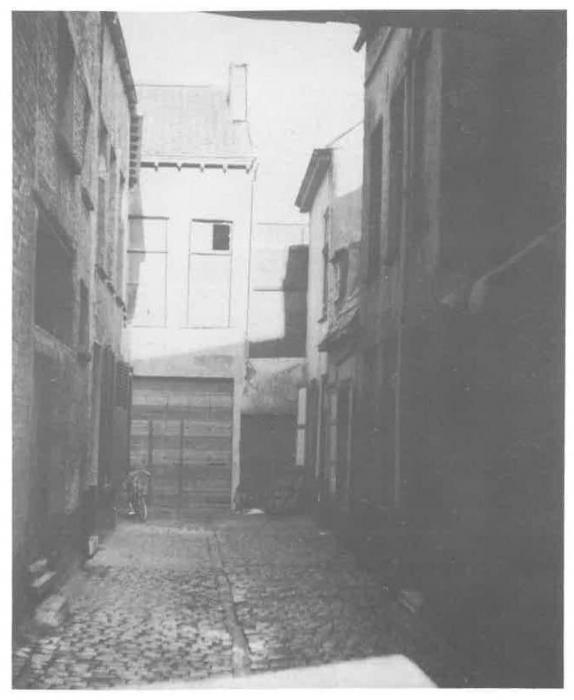 Van Caillie (1985, pl. 178)