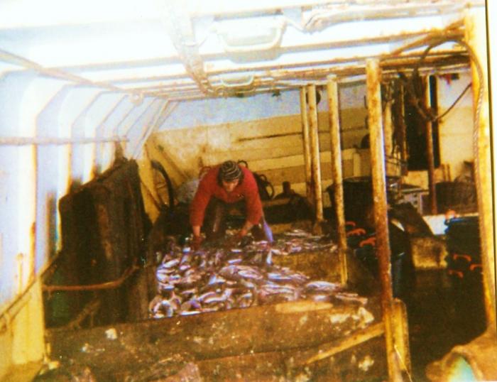 In het visruim