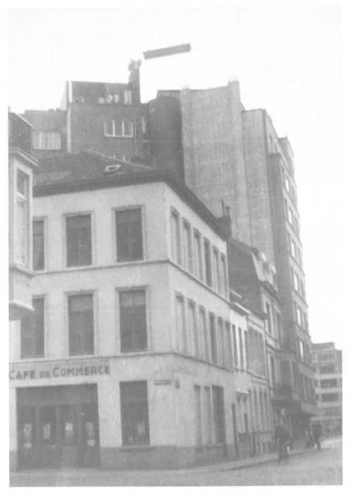 Van Caillie (1987, pl. 144)